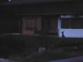 6.15 uur, herten voor de deur